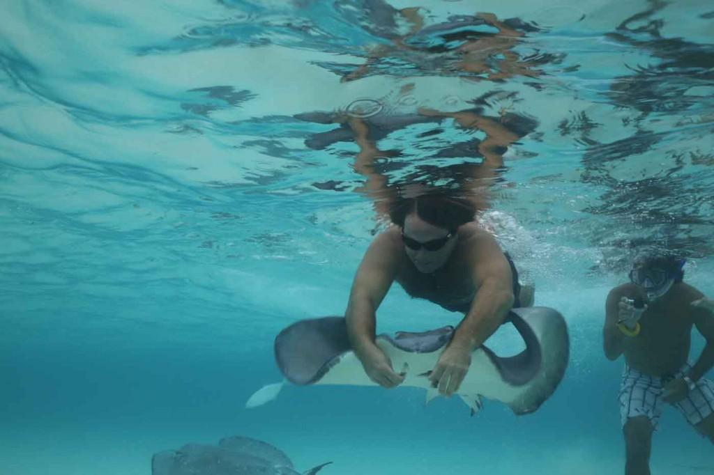 dave underwater